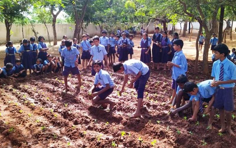 Nurturing Future Farmers through the ECO Project